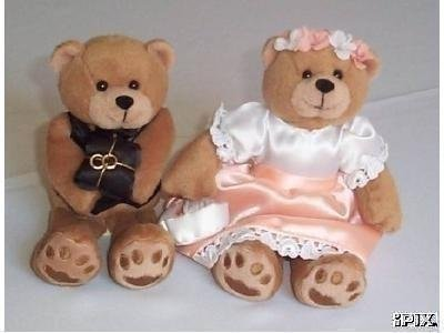 Ring Bearer and Flower Girl Teddy